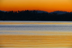 golden lines (Marsala Florio) Tags: sunset italy lake canon tramonto lombardia soe flickraward laghidibrianza blinkagain flickrstruereflection1 flickrstruereflection2 flickrstruereflection3 flickrstruereflection4 sx40hs bbng canonpowershotsx40hs