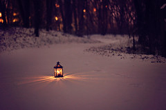the sun is gone but I have a light (AmyJanelle) Tags: light snow dark woods alone purple path magic footprints narnia lone lantern shining lightindarkness snowypath