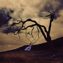 life support (brookeshaden) Tags: selfportrait storm tree nature fairytale wind mothernature treeoflife lifesupport brookeshaden texturebylesbrumes