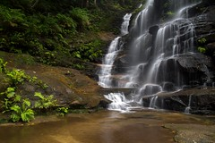 Water falling (danpalmer) Tags: water flow waterfall sydney bluemountains nsw
