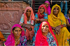 1058 LA FOULE A LA FOIRE DE PUSHKAR (jean pierre floch) Tags: india temple tajmahal palais pushkar rajasthan forteresse inde mosqué templee