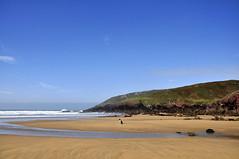 Poppy on Freshwater West (Keartona) Tags: blue sky dog west beach wales collie sitting poppy pembrokeshire freshwater