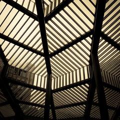 Lines and Lives (Gilderic Photography) Tags: roof winter sky urban abstract glass lines architecture modern hospital square lumix europe raw belgium belgique belgie geometry hiver ceiling panasonic ciel scifi chu liege hopital lignes verre lightroom geometrie carre 500x500 sarttilman gilderic lx3 dmclx3
