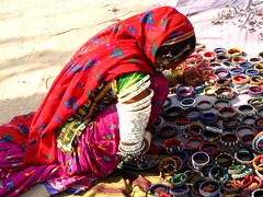 Seller (Shreeram Ghaisas) Tags: birds kutch dasada rann littlerann gujarath