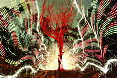 (quornflake) Tags: longexposure trees red lightpainting man tree wool night fire weird fireworks sparklers fisheye lighttrails trippy sparks