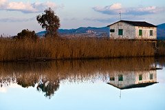 (Capannelle) Tags: reflection river fiume riflesso mignone