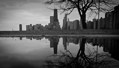 Chicago Reflection (rseidel3) Tags: chicago tree water skyline buildings nikon hancock refelction