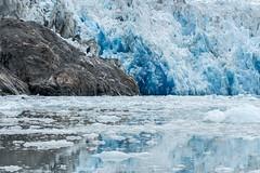 _MG_5012a (markbyzewski) Tags: alaska ugly iceberg tracyarm southsawyerglacier