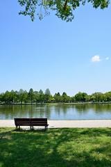Empty bench (tsu55) Tags: park bench pond shade    nikond7000