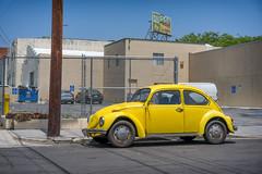 Slug Bug! (ctklink) Tags: california car yellow vw zeiss losangeles sony beetle tyler hollywood klink a7ii nikcollection sonnartfe1855