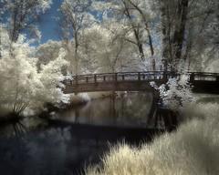 Minnehaha Creek infrared (Fritillaria1) Tags: bridge minnesota creek ir minneapolis infrared minnehaha