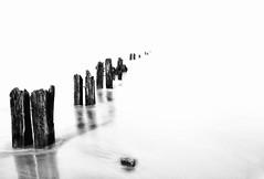Sandsend Groynes (derekgordon1) Tags: wood longexposure sea bw seascape monochrome mono blackwhite nikon timber highkey northyorkshire breakwater groynes sandsend sigma1020 d7100