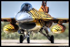 F16 Tiger (2016) (Ismael Jorda) Tags: fighter aviation military tiger f16 falcon tigermeet