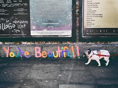 "Shoreditch ""You're Beautiful"" - London Street Photography (Nicholas Goodden) Tags: city people urban dog streetart color colour london beautiful beauty vintage photography graffiti message candid citylife streetphotography pug olympus retro ugly londres faceless streetphoto unposed anonymous bricklane londra urbanlife urbanphotography anonymity londoners streetphotographer photoderue penf notposed streetsoflondon yourebeautiful urbanphotographer mirrorless unrecognisable microfourthirds"