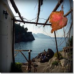 on the beach (jjamv) Tags: ocean park cruise flowers autumn sea italy mountains fall beach nature trekking island capri coast mediterranean italia mare sailing ieranto campania amalficoast b