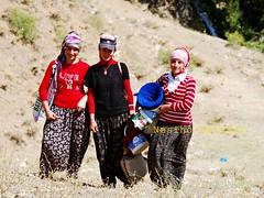 Mountains Smile(Brvan,Ferha,Sakne) (NESIHO) Tags: life trip mountains color love smile female work women faces joy like september highland hardwork kurdistan kurds nesih hizan axkis nesiho