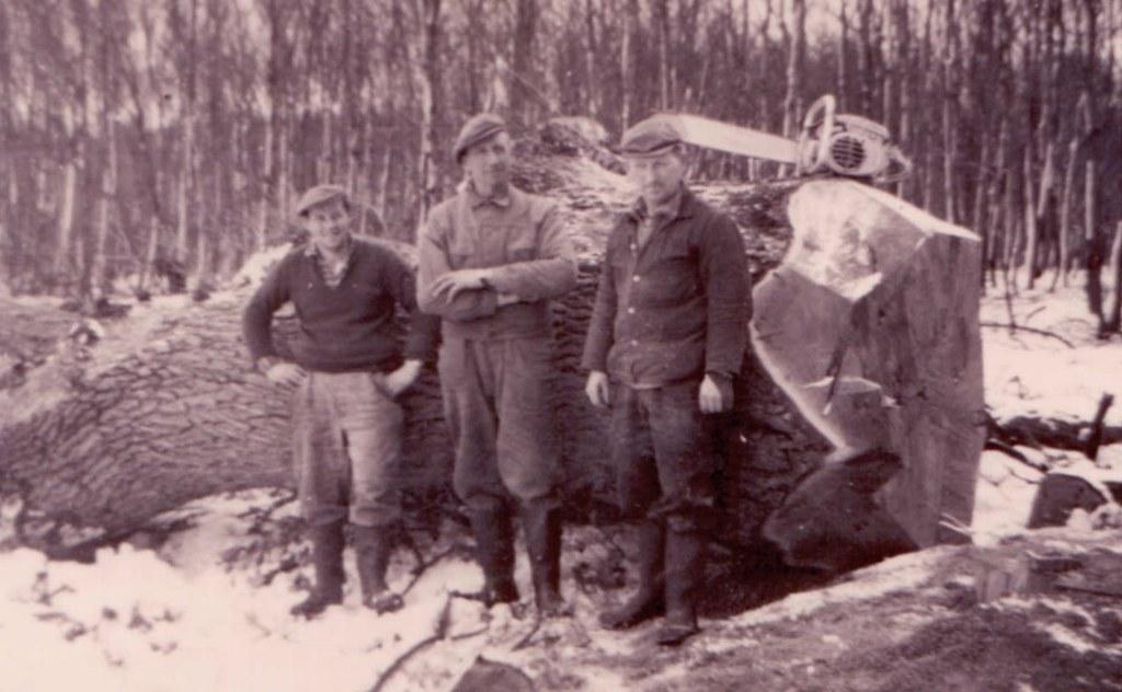 skovarbejdere-i-vemmetofte-1960-min-far-til-højre