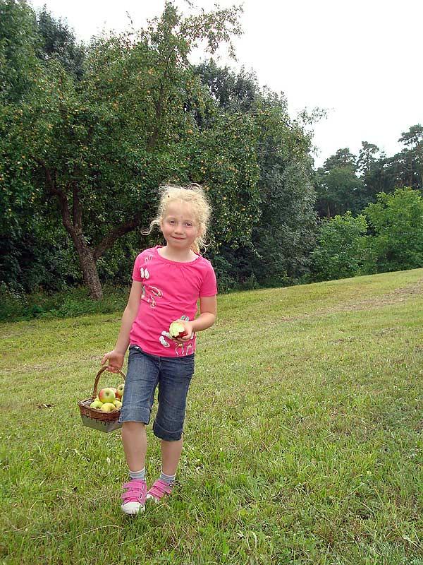 Ferienhof Laux - Mädchen sammelt Äpfel