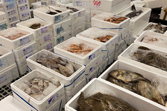 Rungis-12.jpg (Bart Althuizen Fotografie) Tags: people food fruit photography market markt vis parijs eten groenten kaas vlees rungis inkoop