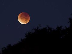 Lunar Eclipse (Marc Briggs) Tags: moon eclipse lunar lunareclipse dsc9913b
