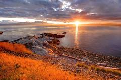 Evening's Pageant (Northern Straits Photo) Tags: sunset canada beach bravo bc britishcolumbia victoria esquimalt mygearandme mygearandmepremium northernstraitsphotography