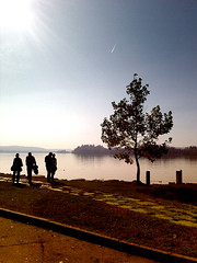 percorsi alternativi (pamo67) Tags: lake backlight lago controluce gavirate pamo67
