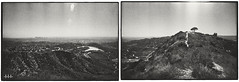 The real L.A skyscraper (steven -l-l-l- monteau) Tags: california road trip blackandwhite bw panorama usa west tree film analog america 35mm coast los diptych san view noiretblanc angeles kodak trix peak nb basin valley 400 hollywood m42 fernan