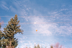 (michaelbala) Tags: balloons telephone wires leicac1