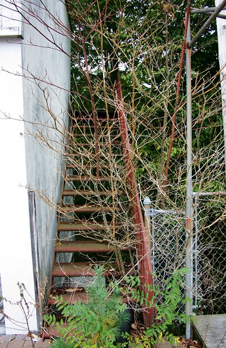 Stairs to abandoned second floor of pool cabana