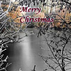Merry Christmas my Friends ! (fifich@t / Franise / off) Tags: christmas winter copyright mist paris france cold river landscape frost postcard wishes laseine copyright dedicatedphoto squarepicture allrightsreserved squarephotography formatcarre copyrightallrightsreserved tousdroitsrservs nikond300 nikkor1685vr lightroomps fifichat1 frs fificht frs