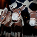 sterrennieuws vtmkerstparade2011vilvoordevilvoorde vtmkzoomkerstparade2011vilvoordevilvoorde