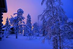 Ruka (timo_w2s) Tags: winter snow finland lapland kuusamo ruka