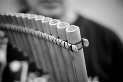 165/365:  eleven pipers piping... (i_fall) Tags: blackandwhite bw selfportrait me dof bokeh autoretrato lips 365 selfie 12daysofchristmas 365days ifall elevenpiperspiping woodenpipes