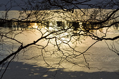 Branchy silhouette (HibaHaba) Tags: winter reflection ice nature water silhouette suomi finland branch talvi vesi vantaa sula luonto j heijastus oksa kuusijrvi