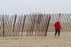 (megmccormi) Tags: california beach fog wisconsin santamonica uwmadison rosebowl