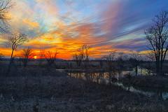 Wet & Wild Lands (Kansas Poetry (Patrick)) Tags: sunset lawrencekansas bakerwetlands wakarusawetlands patrickemerson nancylovinglypoisonspatrick