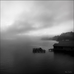 Gig Harbor, WA ~ Foggy, cold morning in the harbor.