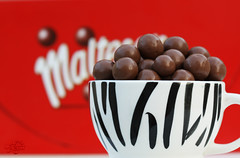 Maltesers (عفاف المعيوف) Tags: