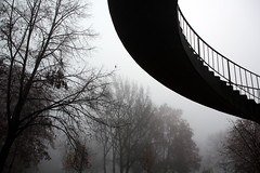 replacement (cc) (marfis75) Tags: bridge urban mist nature fog modern rural germany deutschland wiesbaden nebel hessen natur replacement graph cc civil creativecommons western civilization curve brcke bume baum municipal deutsch kurve schierstein 2011 urbanised stdtisch urbanized zivilisation ccbysa verdrngung cicilisation marfis75 citify bestcapturesaoi