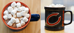 15/366 : 2012 (Kerrie Lynn Photography (Sugaree_GD)) Tags: winter chicago hot cold coffee fan miniature diptych tea chocolate bears nfl mini marshmallows mug playoffs 2012 postseason project365 maybenextyear 365days apicaday sugareegd 15366 3652012 shuttersisters365 011512 2012inphotos project36512012