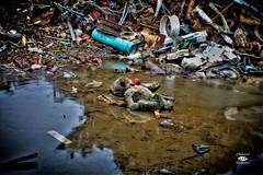 Come and Play (ABalancedPerspective) Tags: bear water metal puddle mud teddybear scrapyard scrap scrapheap
