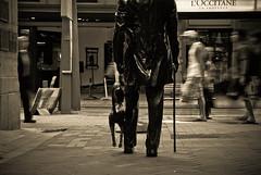 Evening stroll (annickashyam1) Tags: newzealand sculpture dog cane evening shropshire steps wellington stroll fritz plimmerton plimmer lambtonquay johnplimmer plimmersteps wellingtoncitycouncil fatherofwellington