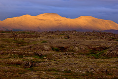 "Erstarrte Lava, Region Myvatn, Nordisland • <a style=""font-size:0.8em;"" href=""http://www.flickr.com/photos/73418017@N07/6730126697/"" target=""_blank"">View on Flickr</a>"