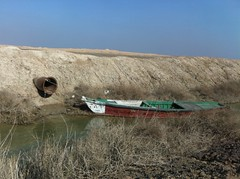 Boat on the Effluent Channel, Basrah, Iraq