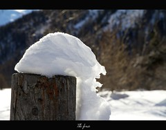 The fence (begumidast) Tags: 7d alpen alps begumidast canon canoneos7d canonwinter cold color eflens efs efs1585mm efs1585mmf3556isusm engadin eos eos7d frost frozen glacier gletscher graubunden ice landscape landschaft landschaften morteratsch musictomyeyeslevel1 mygearandme natur nature outdoor schnee schweiz snow soe sonne sonnenlicht suisse sun svizzera switzerland winter wow1
