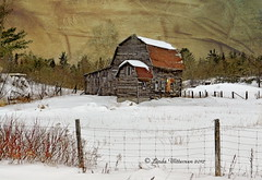My Favourite Old Barn (Lindaw9) Tags: old winter snow barn fence nikond90