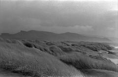 Converge (Sebastian B-B) Tags: leica blackandwhite mountains beach clouds grain rangefinder grasses manzanitaoregon 40mmsummicron mmountlens
