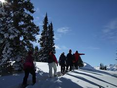 Winter Naturalists 11/12