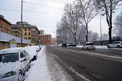 Lungotevere Flaminio (Birnardo) Tags: roma italia neve bianco lazio silenzio disagio digitalcameraclub kartpostal