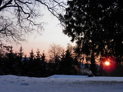 Sunset in Hanshagen (swetlanahasenjger) Tags: 04022012